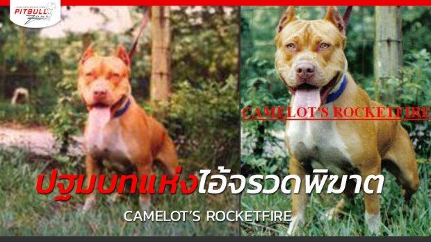 ปฐมบทแห่งไอ้จรวดพิฆาต Camelots Rocketfire คาเมลอต ร็อคเก็ตไฟเออร์